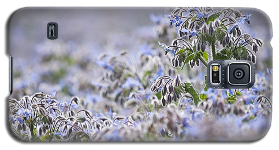 Borage Galaxy S5 Case featuring the photograph Borage (borago Officinalis) 2 by Adrian Bicker