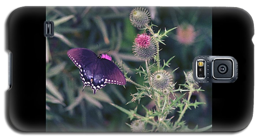 Butterfly Galaxy S5 Case featuring the photograph 060207-13 by Mike Davis