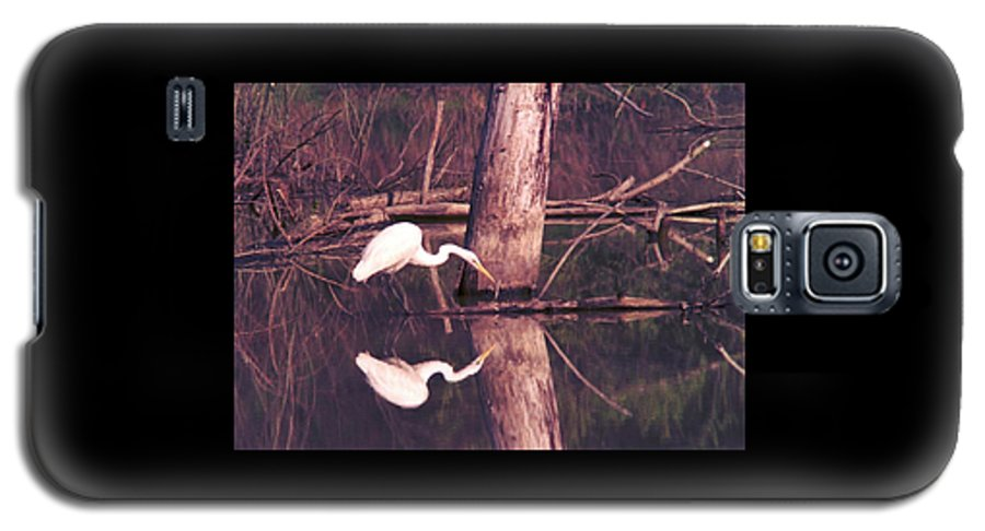 Great Egret Galaxy S5 Case featuring the photograph 070406-17 by Mike Davis