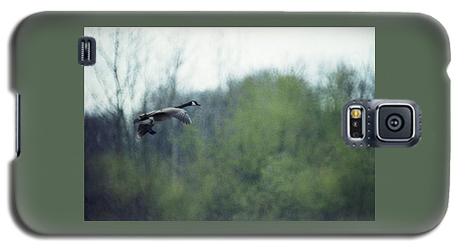 Canada Goose Galaxy S5 Case featuring the photograph 070406-40 by Mike Davis