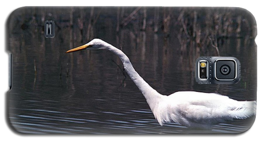 Great Egret Galaxy S5 Case featuring the photograph 070406-8 by Mike Davis