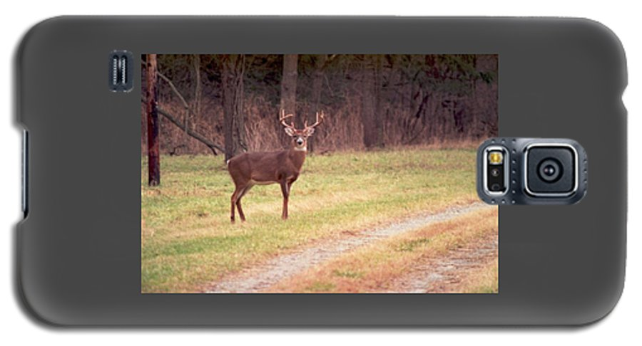 Deer Galaxy S5 Case featuring the photograph 070506-17 by Mike Davis