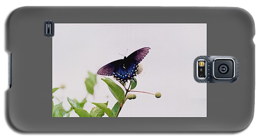 Butterfly Galaxy S5 Case featuring the photograph 080706-5 by Mike Davis