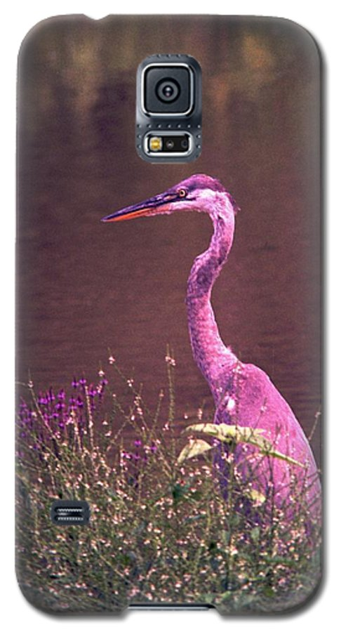 Great Blue Heron Galaxy S5 Case featuring the photograph 080706-12 by Mike Davis