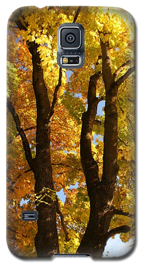 Achieve Galaxy S5 Case featuring the photograph Achievement by Idaho Scenic Images Linda Lantzy