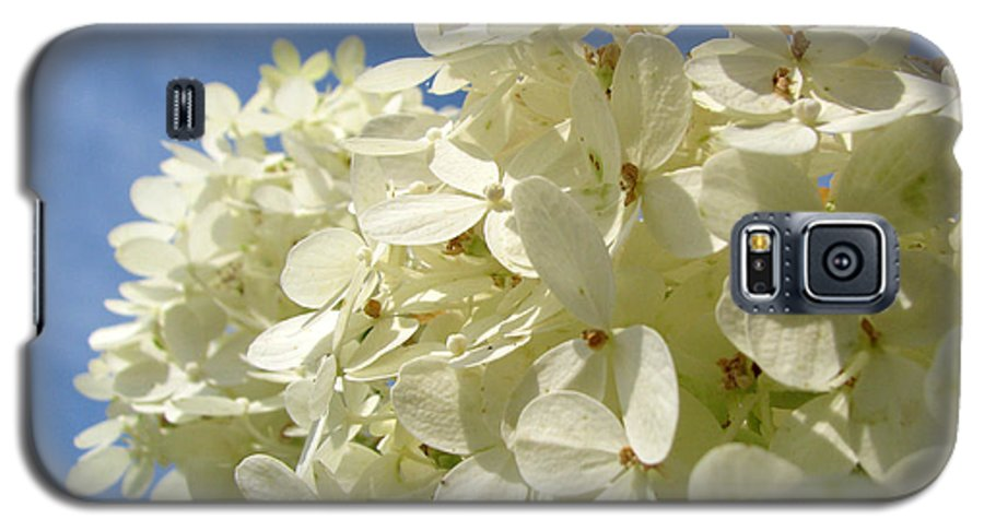 Hydranga Galaxy S5 Case featuring the photograph Hydrangea by Amanda Barcon