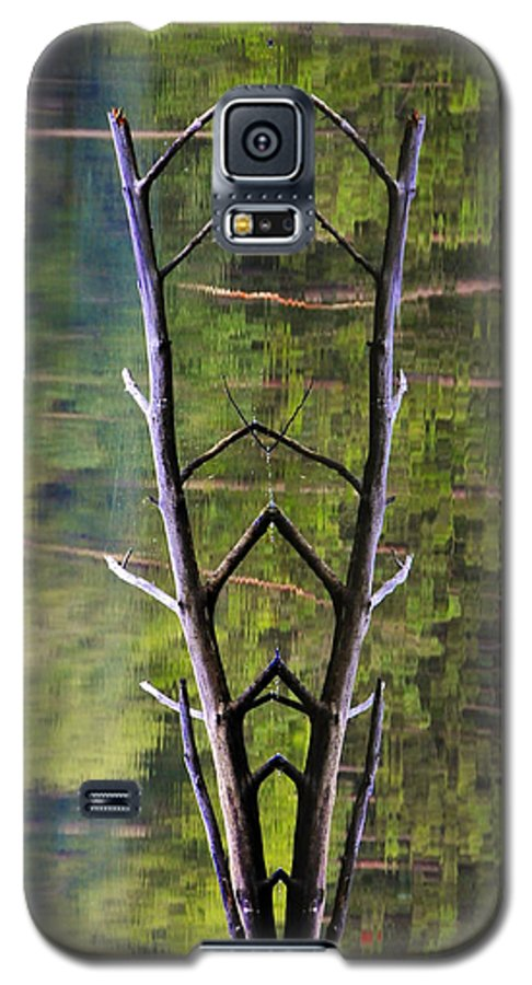 Photography Galaxy S5 Case featuring the photograph Jacob's Ladder by Skip Hunt