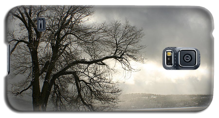 Lake Galaxy S5 Case featuring the photograph Luminescence by Idaho Scenic Images Linda Lantzy