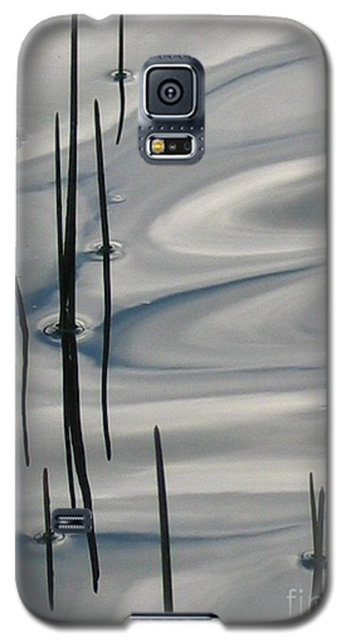 Swirling Galaxy S5 Case featuring the photograph Mesmerized by Idaho Scenic Images Linda Lantzy