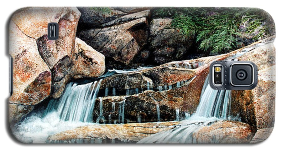 Landscape Galaxy S5 Case featuring the painting Mountain Stream by Frank Wilson