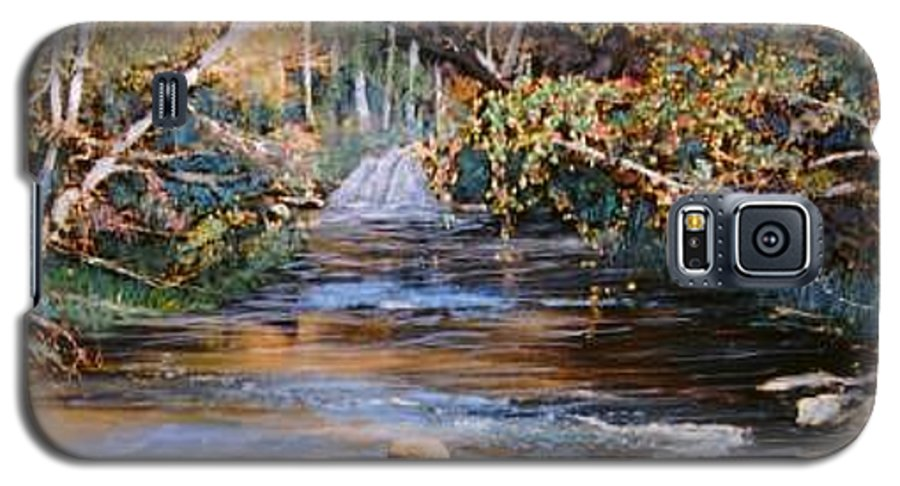 River; Waterfalls Galaxy S5 Case featuring the painting My Secret Place by Ben Kiger