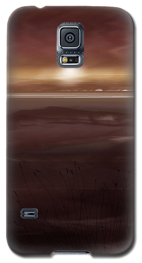 Seascape Galaxy S5 Case featuring the painting Tide Flats At Dusk by Anne Norskog