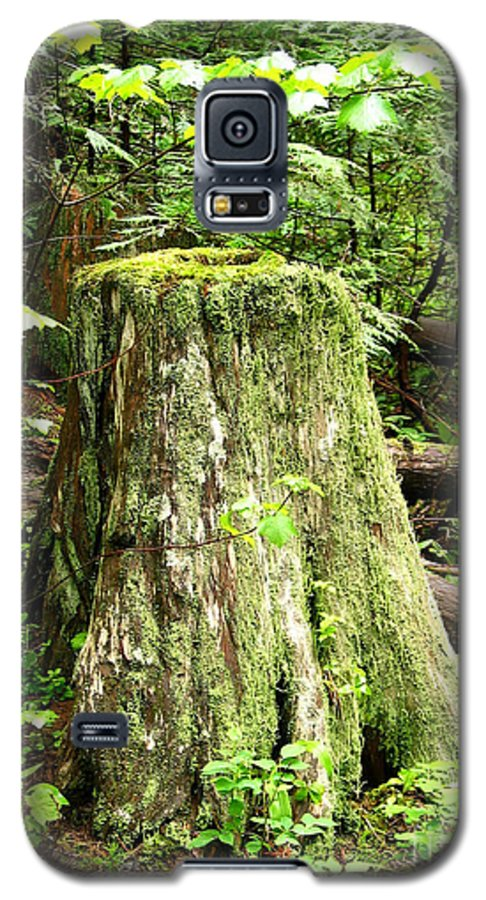 Moss Galaxy S5 Case featuring the photograph Transition by Idaho Scenic Images Linda Lantzy