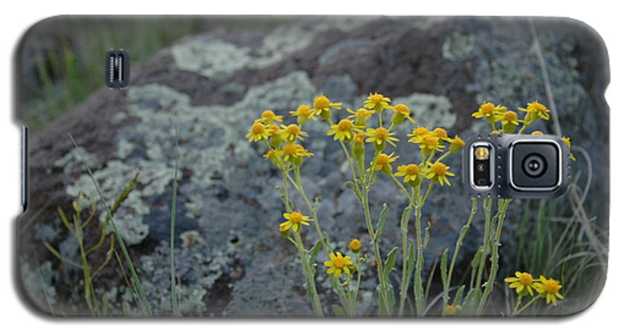 Flowers Galaxy S5 Case featuring the photograph Untitled by Kathy Schumann