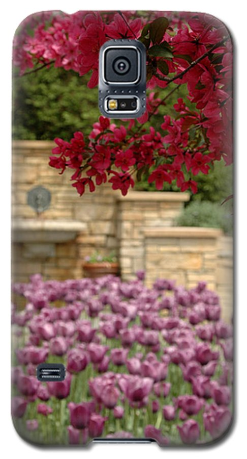 Tulips Galaxy S5 Case featuring the photograph Untitled by Kathy Schumann