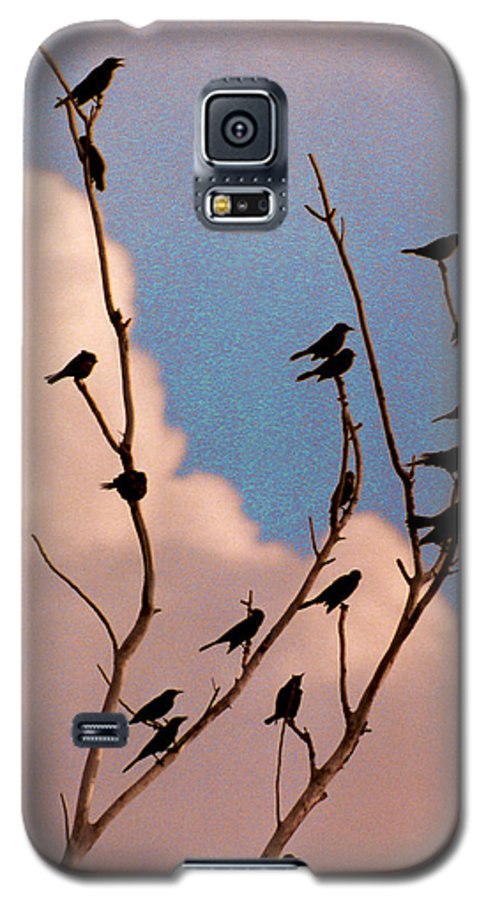 Birds Galaxy S5 Case featuring the photograph 19 Blackbirds by Steve Karol