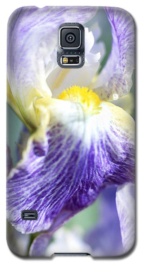 Genus Iris Galaxy S5 Case featuring the photograph Iris Flowers by Tony Cordoza