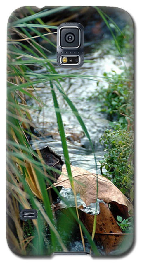 Stream Galaxy S5 Case featuring the photograph Untitled by Kathy Schumann