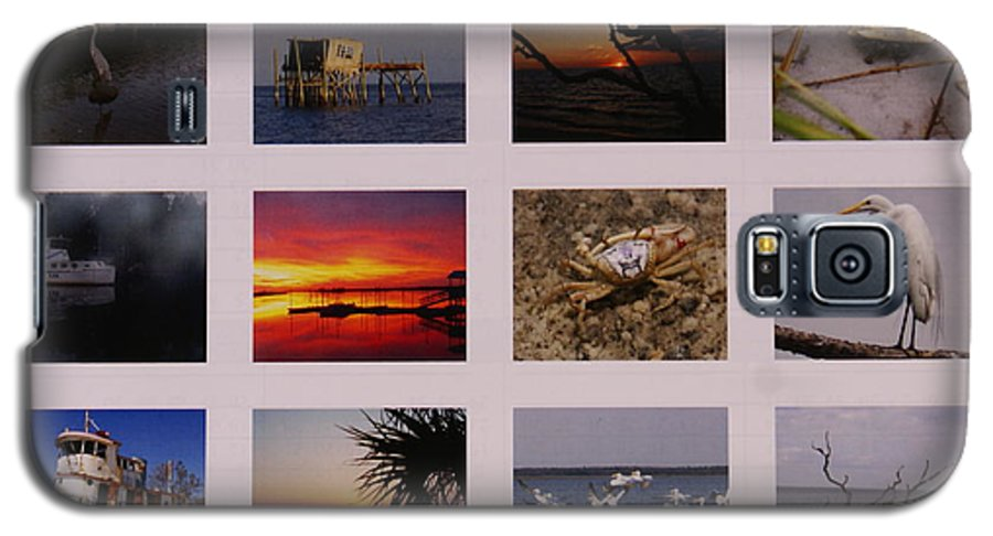 Florida Galaxy S5 Case featuring the photograph 2008 Calendar Back Of Gulf Views Edition by Debbie May