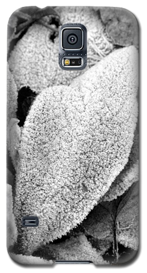 B&w Galaxy S5 Case featuring the photograph Untitled by Kathy Schumann