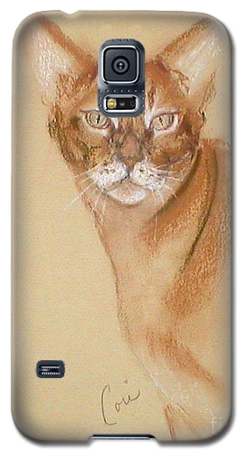 Pastel Galaxy S5 Case featuring the drawing Abyssinian by Cori Solomon