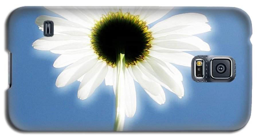 Daisy Galaxy S5 Case featuring the photograph Achievement by Idaho Scenic Images Linda Lantzy