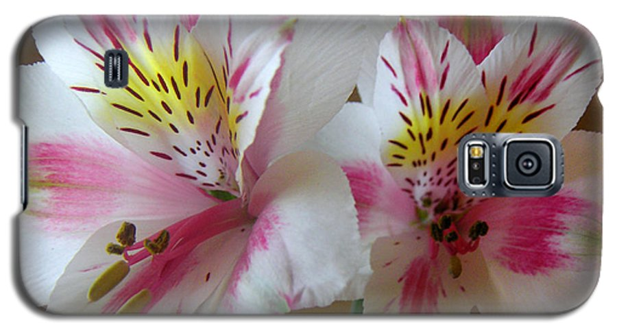 Nature Galaxy S5 Case featuring the photograph Alstroemerias - Heralding by Lucyna A M Green