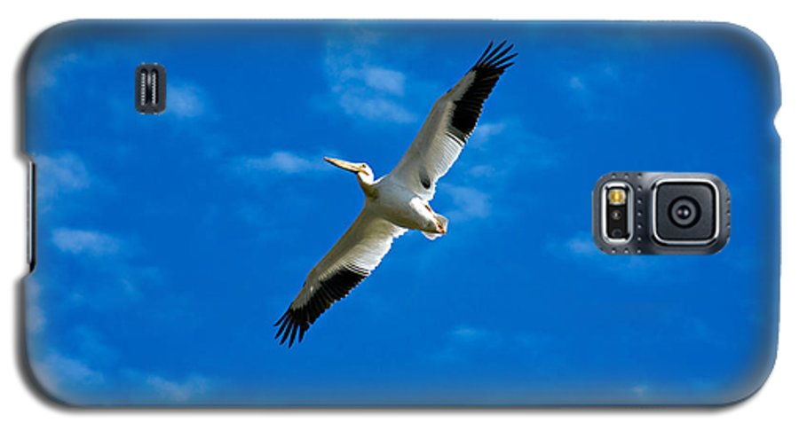 American Galaxy S5 Case featuring the photograph American White Pelican by Marilyn Hunt