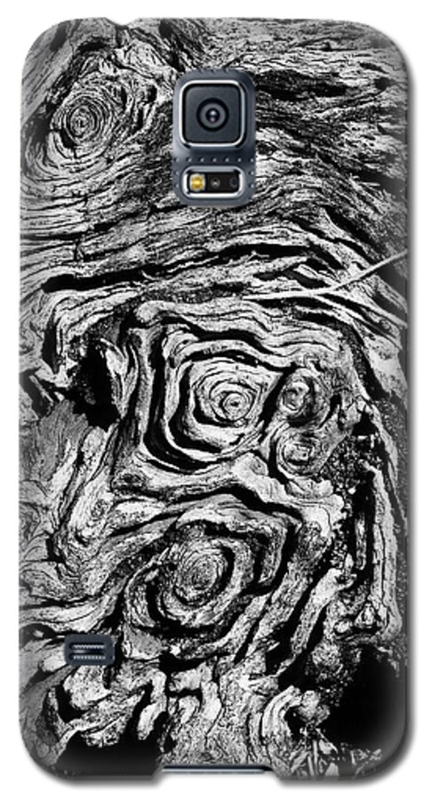 Tree Galaxy S5 Case featuring the photograph Ancient Stump by Christopher Holmes