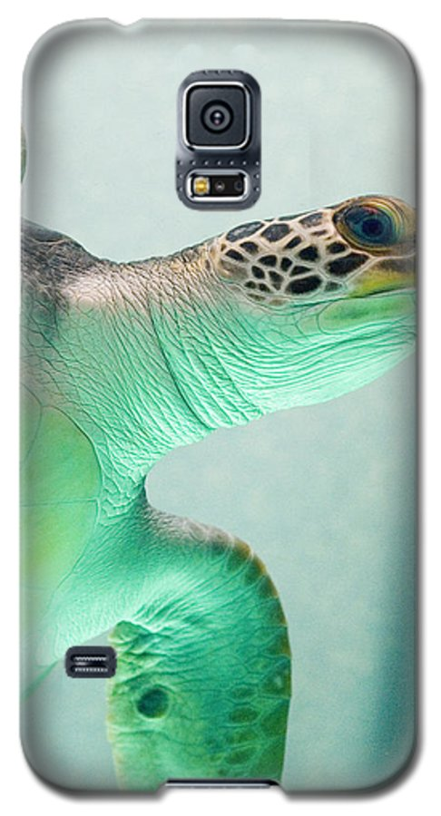 Skip Hunt Galaxy S5 Case featuring the photograph Angel 2 by Skip Hunt