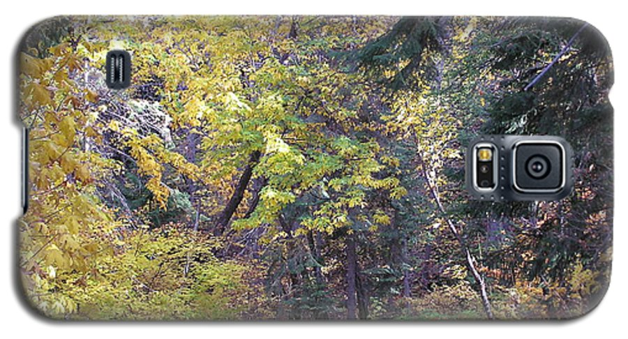 Autumn Photographs Galaxy S5 Case featuring the photograph Autum Colors by Louise Magno