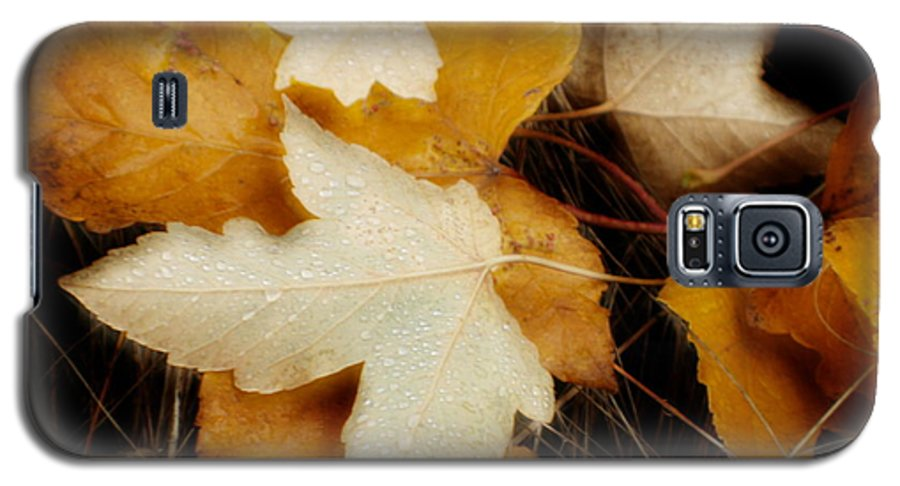 Leaf Galaxy S5 Case featuring the photograph Autumn Dew by Idaho Scenic Images Linda Lantzy