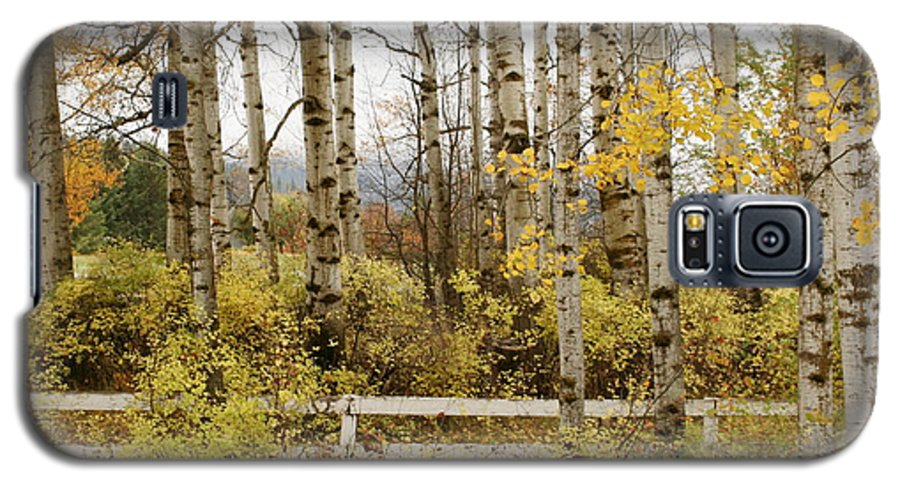 Grove Galaxy S5 Case featuring the photograph Autumn Grove by Idaho Scenic Images Linda Lantzy