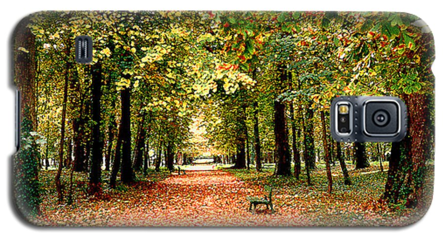 Autumn Galaxy S5 Case featuring the photograph Autumn In The Park by Nancy Mueller