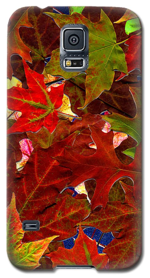 Collage Galaxy S5 Case featuring the photograph Autumn Leaves by Nancy Mueller