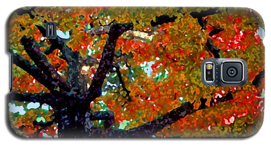 Fall Galaxy S5 Case featuring the photograph Autumn Tree by Steve Karol