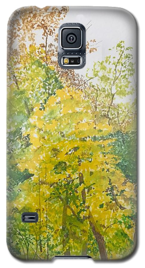 Autumn Galaxy S5 Case featuring the painting Backyard by Leah Tomaino
