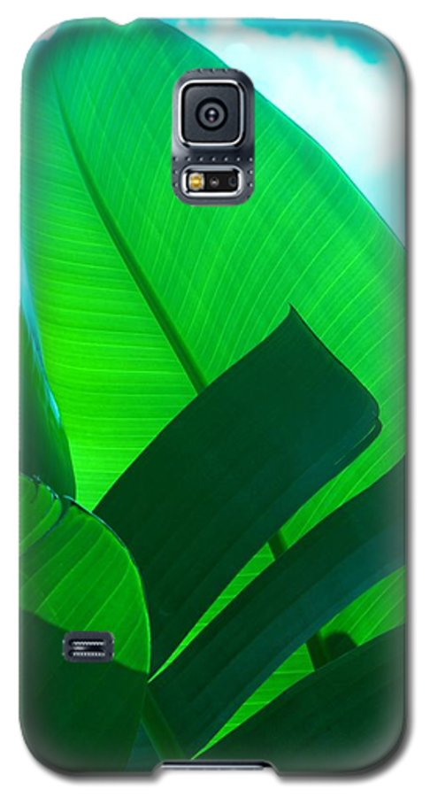 Botanical Galaxy S5 Case featuring the photograph Banana Aqua by Florene Welebny
