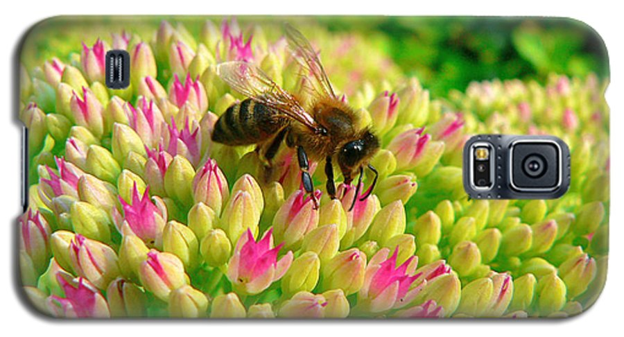 Flowers Galaxy S5 Case featuring the photograph Bee On Flower by Larry Keahey