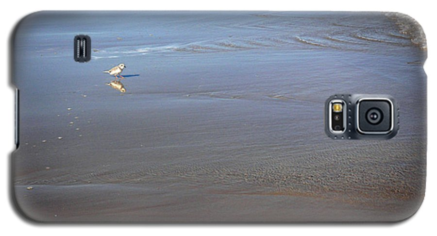 Nature Galaxy S5 Case featuring the photograph Being One With The Gulf - Cautious by Lucyna A M Green