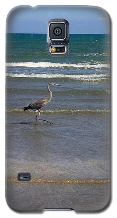 Nature Galaxy S5 Case featuring the photograph Being One With The Gulf - In Step by Lucyna A M Green
