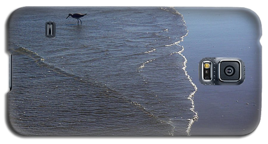 Nature Galaxy S5 Case featuring the photograph Being One With The Gulf - Pinpointing by Lucyna A M Green