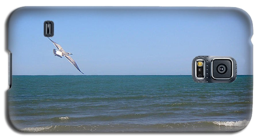 Nature Galaxy S5 Case featuring the photograph Being One With The Gulf - Soaring by Lucyna A M Green
