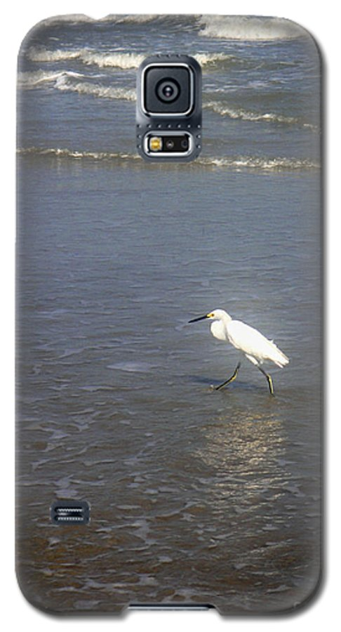 Nature Galaxy S5 Case featuring the photograph Being One With The Gulf - Wary by Lucyna A M Green