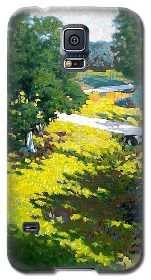 Landscape Galaxy S5 Case featuring the painting Birds Eye View by Kevin Lawrence Leveque