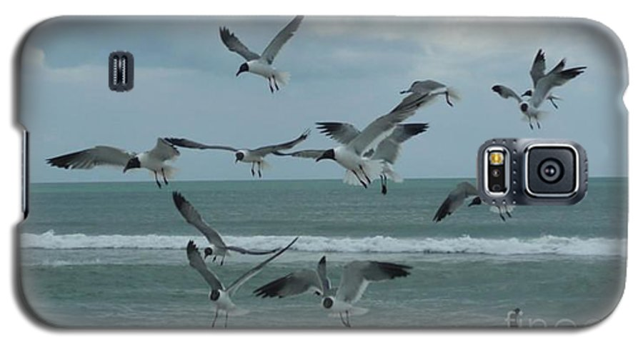 Birds Galaxy S5 Case featuring the photograph Birds In Flight by Barb Montanye Meseroll