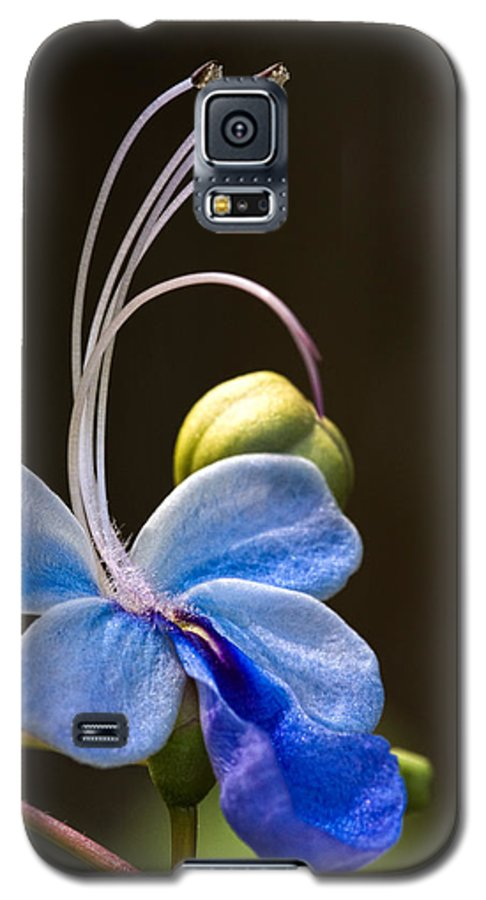 Flower Galaxy S5 Case featuring the photograph Blooming Butterfly by Christopher Holmes