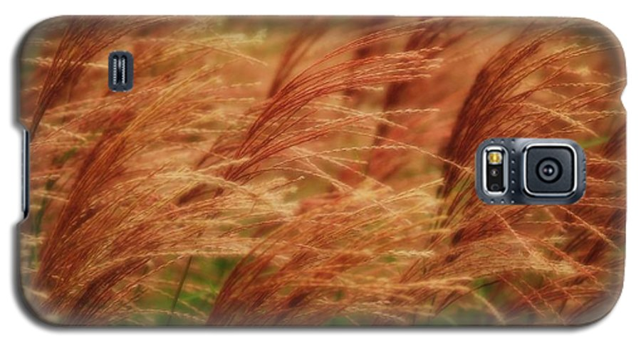 Win Galaxy S5 Case featuring the photograph Blowing In The Wind by Gaby Swanson