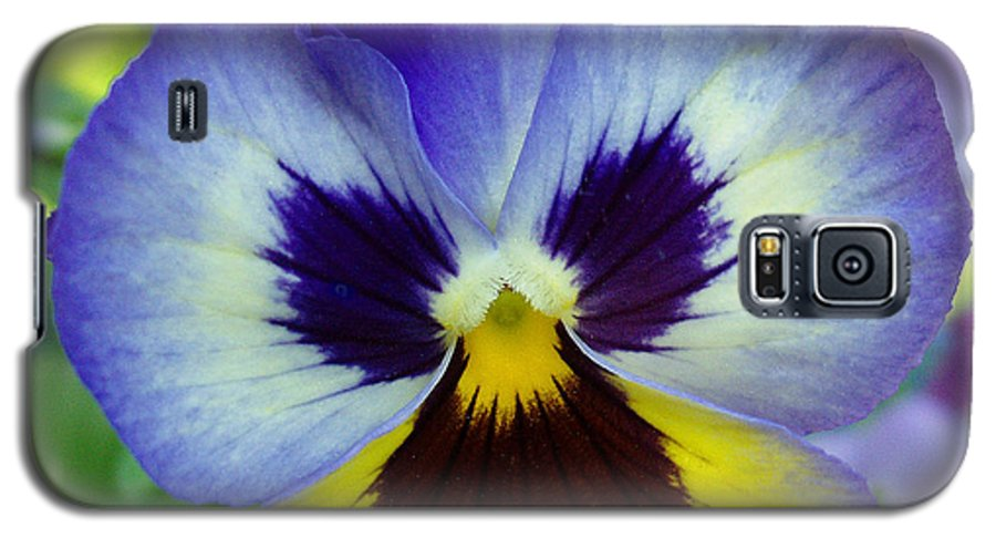 Flowers Galaxy S5 Case featuring the photograph Blue And Yellow Pansy by Nancy Mueller