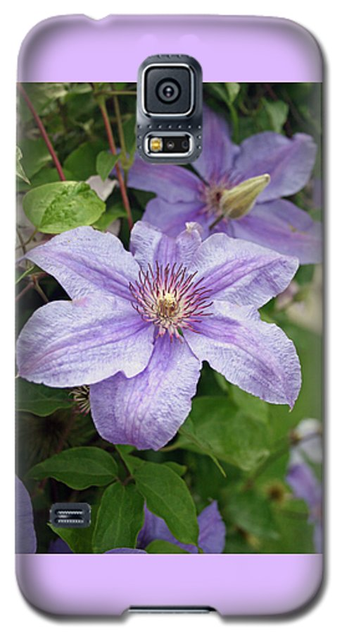 Clematis Galaxy S5 Case featuring the photograph Blue Clematis by Margie Wildblood